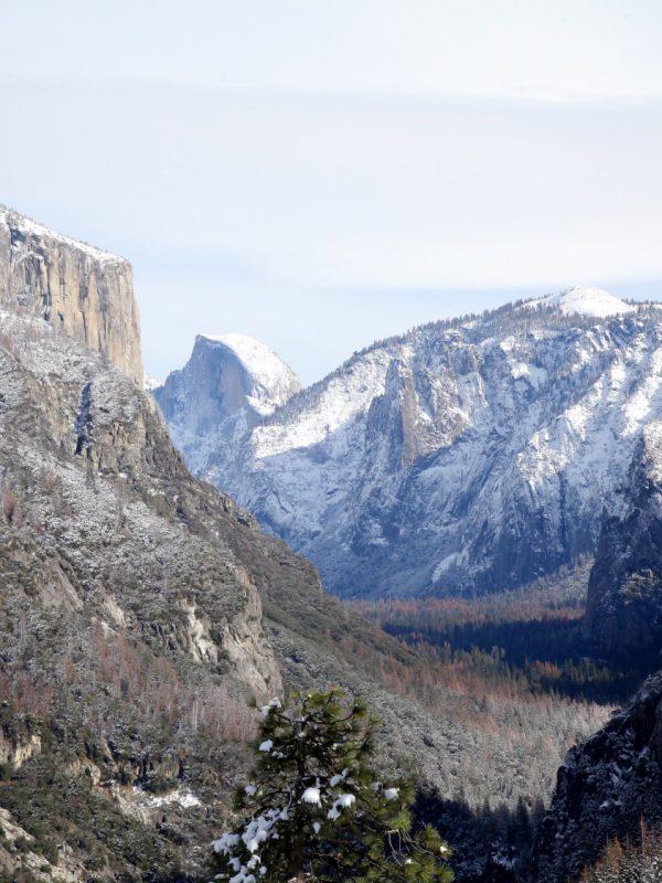 Kinh nghiệm du lịch bụi Mỹ - Vườn quốc gia Yosemite